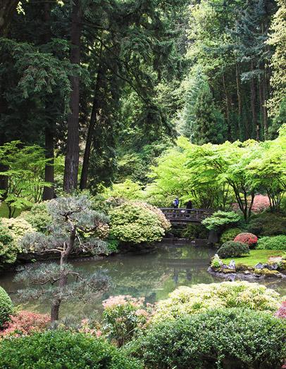 home_garden_pic5
